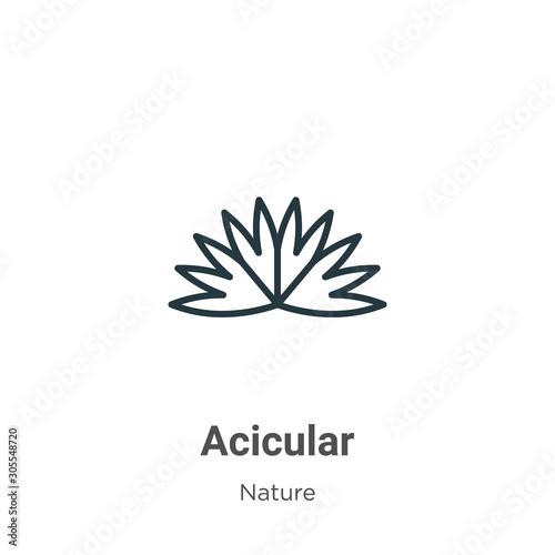 Photo Acicular outline vector icon
