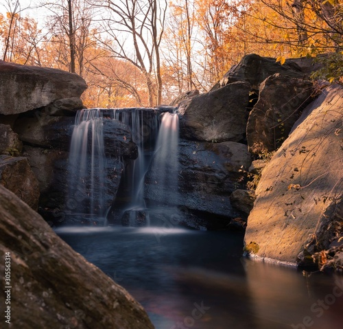 waterfall trees central park new york colors winter water river Wall mural