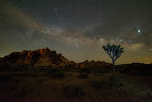 Milky Way At Joshua Tree Natio...