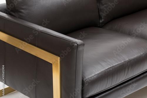 Sven Oxford Black Sofa with white background Canvas Print
