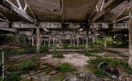 Fotografia, Obraz Image of abandoned industrial warehouse where the vegetation is invading the now