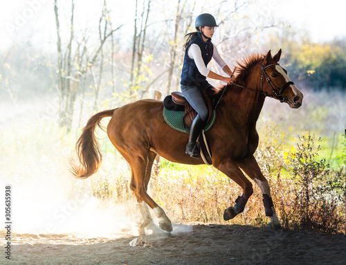 Fototapeta Young pretty girl riding a horse in autumn obraz