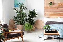 Miniature Zen Garden In Stylish Bedroom Interior