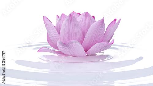 3d rendered spa illustration - lotus flower © SciePro