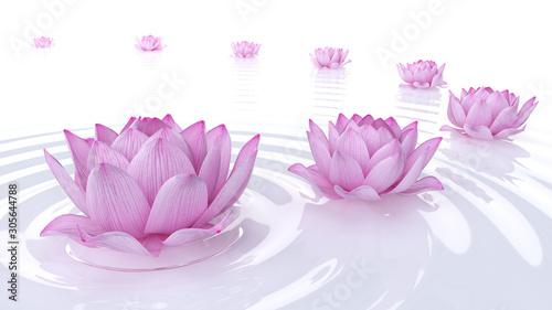 3d rendered spa illustration - lotus flowers © SciePro