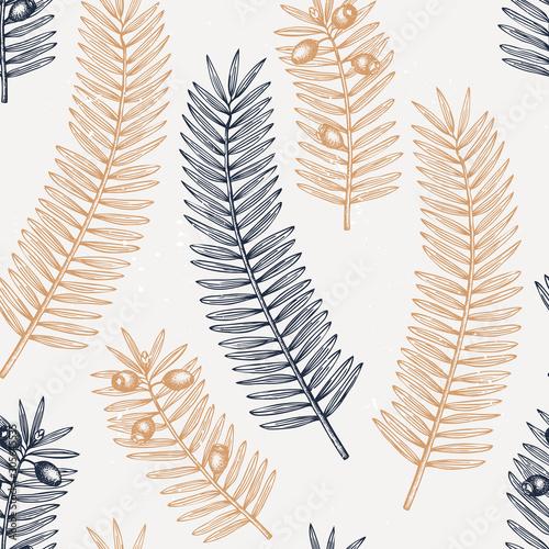 Obraz na plátně European yew vector background