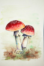 Watercolor Red Fly Agarics. Po...