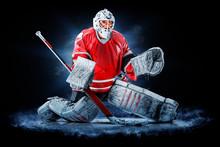 Professional Ice Hockey Goalke...