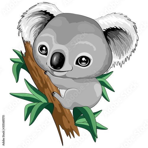Photo sur Aluminium Draw Koala Baby Cute Cartoon Character Vector Illustration