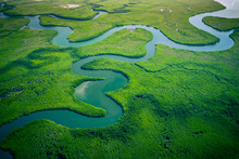 Gambia Mangroves. Aerial View ...