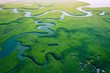 Leinwanddruck Bild - Gambia Mangroves. Aerial view of mangrove forest in Gambia. Photo made by drone from above. Africa Natural Landscape.