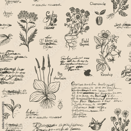 Fototapeta Vector seamless pattern on the theme of medicine and herbal treatment in retro style. Repeatable background with hand-drawn sketches, unreadable notes, various herbs and old medical symbols, blots. obraz