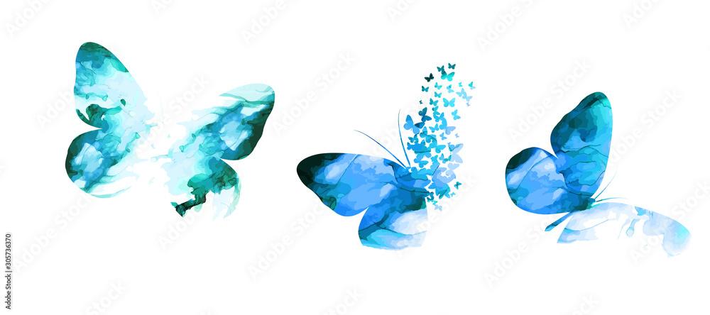 Fototapeta blue paint butterfly. Abstract mosaic of butterflies. Vector illustration