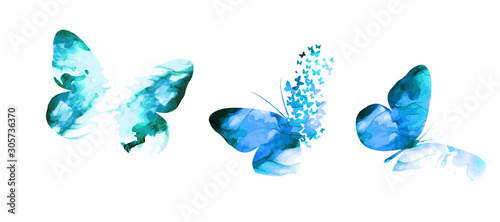 blue paint butterfly. Abstract mosaic of butterflies. Vector illustration - 305736370