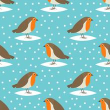 Robin Birds Cute Winter Christ...