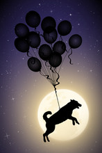 Dog Flying On Balloons On Moon...