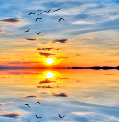 Fototapetareflejos de la puesta de sol en el lago en calma