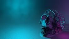 Mystical Foggy Mood With Human Skull