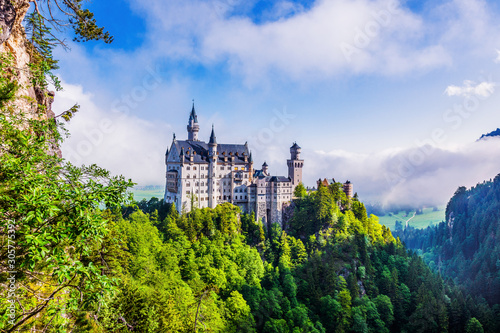 Fotografie, Obraz  Neuschwanstein Castle, Germany.
