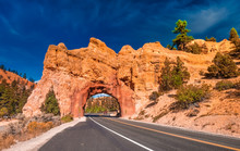 Red Canyon On The Dixie National Forest At The Entrance Of Bryce Canyon National Park, Utah, USA
