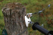 Electric Fence Gate Protects A...
