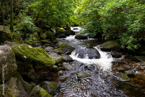Photo Arroyo en el Parque Nacional Killarney, Irlanda
