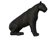 Black Panther Cat Isolated On White, 3d Render.