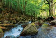 Rapid Stream Among The Rocks I...
