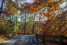 Little Mulberry Park, GA Autumn Foliage