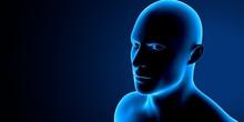 3d Illustration Human Body Eye...