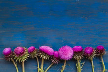 Decorative Border With Thistle...