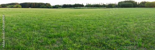 Photo 芝のパノラマ