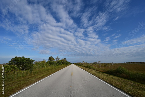 Obraz na plátne  Wide angle view of Main Road in Everglades National Park, Florida receding into distance under beautiful winter cloudscape