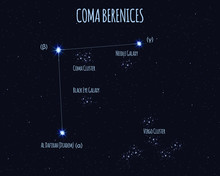 Coma Berenices (Berenice's Hair) Constellation, Vector Illustration With The Names Of Basic Stars Against The Starry Sky
