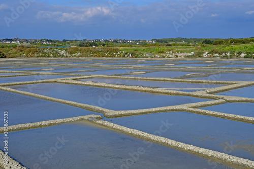 Fotografie, Obraz Guerande, France - april 14 2017 : salt marshes