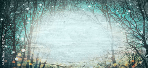 Abstract winter forest background with wood texture - Magical lights - Christmas backdrop