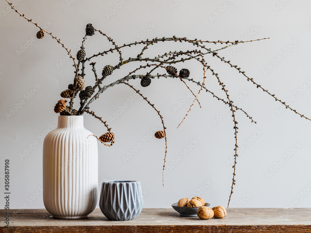 Obraz Autumn composition with larch tree branches with cones on a gray background. Fall mood still life in Nordic minimal style fototapeta, plakat
