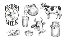 Milk And Dairy Products. Fresh...