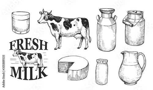 Valokuvatapetti Milk and dairy products