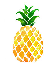 Hand Drawn Watercolor Pineapple Isolated On White Background