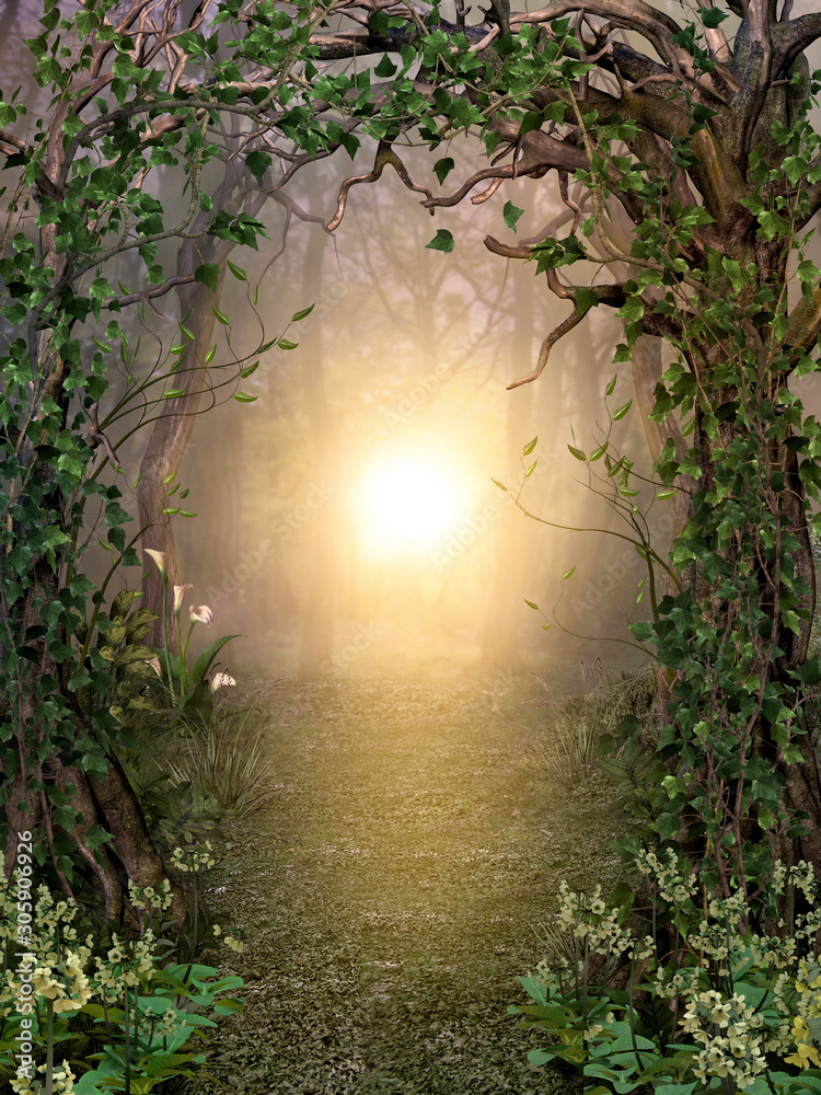 Fototapeta Path through enchanting fairytale deep forest view with beautiful heavenly sunset