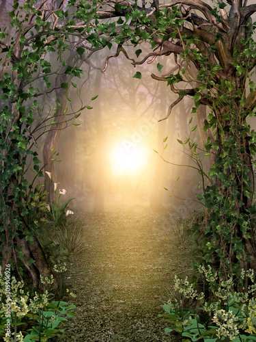 Photo Path through enchanting fairytale deep forest view with beautiful heavenly sunse