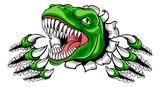 Fototapeta Dinusie - A dinosaur T Rex or raptor cartoon animal mascot tearing or ripping through the background