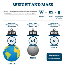 Weight And Mass Vector Illustration. Labeled Educational Comparison Scheme.