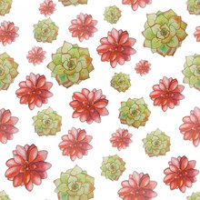 Watercolor Green Red Seamless Pattern With Succulents