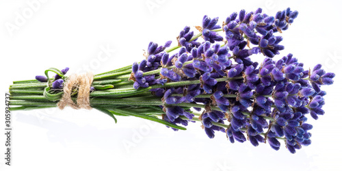 Fotomural Bunch of lavandula or lavender flowers on white background.