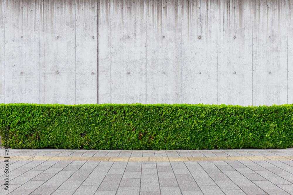 Fototapety, obrazy: street wall background ,Industrial background, empty grunge urban street with warehouse brick wall