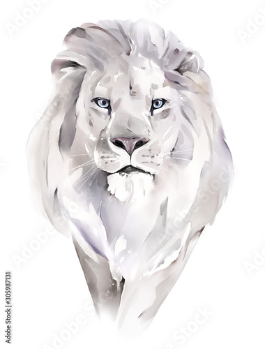Naklejki do wnętrz  watercolor-illustration-drawing-lion-isolated-on-white-background
