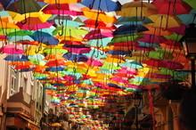 Colorful Umbrella In Agueda, P...