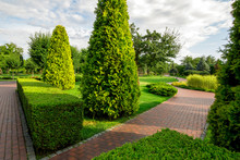 A Park With Boxwood Hedge And ...